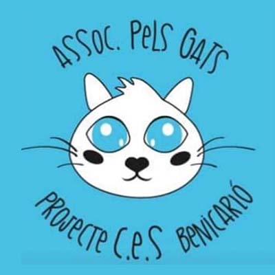 Asociación felina Benicarló