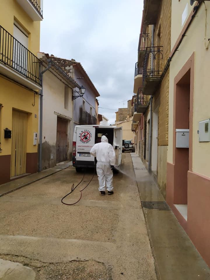 Control de plagas en Benicarló